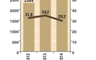 Фаст фуд в россии статистика